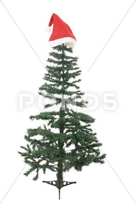 Stock photo of the bare christmas tree ready to decorate
