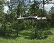 House pan - kampong on the isle of Pulau ubin (Singapore) Stock Footage