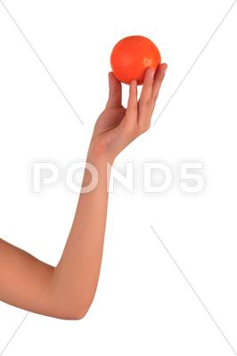 Stock photo of woman's hands with orange isolated over white background