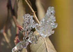 Ice in nature. macro Stock Photos