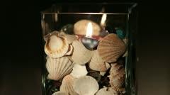 Shells Stock Footage