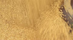 Oats Being Augered into a Silo Stock Footage