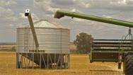 Stock Video Footage of Header Offloading Oats into a Field Bin
