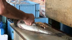 Cleaning fish with an iron brush at the Tsukiji fish market in Japan Stock Footage