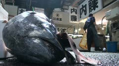 Fish head and carts at the Tsukiji fish market in Tokyo, Japan Stock Footage