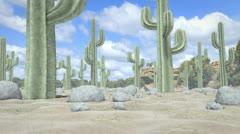 Desert Journey - stock footage