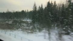 View of the snow-covered fir from window of high-speed train Stock Footage