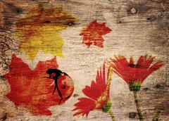 fall theme  background - stock photo