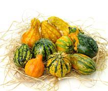 gourds - stock photo