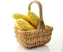 ears of corn - stock photo