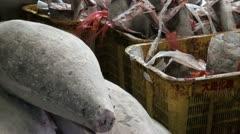 Tuna trash bin, bloody, Tsukiji fish market, Tokyo, Japan Stock Footage