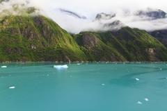 beautiful alaskan scenery - stock photo