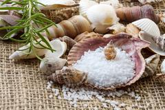 spa background with sea salt, shells and rosemary - stock photo