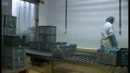 Person at assembly line in factory Stock Footage