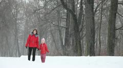 Walk in old park in the snow Stock Footage