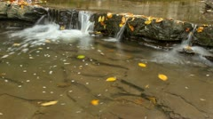 Small waterfall timelapse Stock Footage