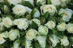 Group of white roses, wedding decorations Stock Photos