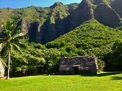 Polynesian Hut - stock photo