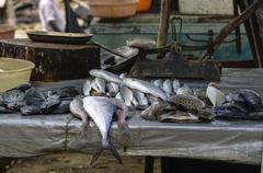 Fish Street Market - stock photo