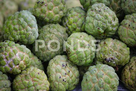 Stock photo of custard apple
