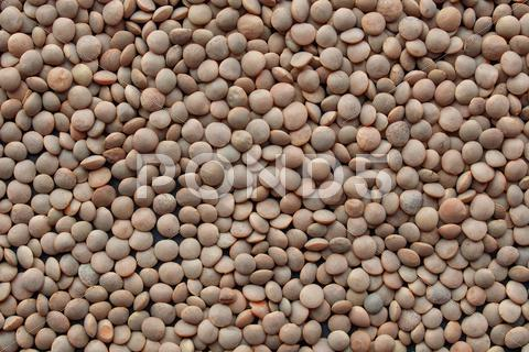 Stock photo of lentils picture