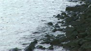 Stock Video Footage of Rocky shoreline