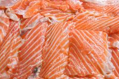 raw salmon background - stock photo