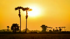 Time lapse sunset on countryside field of thailand Stock Footage