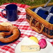 Vintage ulkona piknik Kuvituskuvat