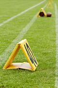 stadium lawn - stock photo