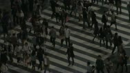 Stock Video Footage of Shibuya crossing at night, zoom out