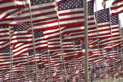 Hundreds american flag blowing in the wind red white blue stars stripes Stock Footage