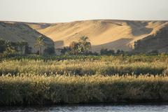 River nile scenery at evening time Stock Photos