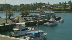 Kiama fresh fish market, Australia Stock Footage