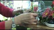 Florist Stock Footage