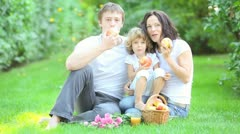 family having picnic - stock footage