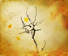 Fall grunge background Stock Photos