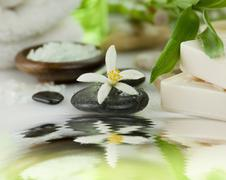 spa treatment - stock photo
