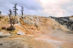 Stock Photo of mammoth springs. yellowstone national park, wyoming