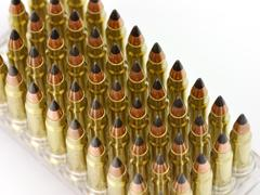 Hunting bullets Stock Photos