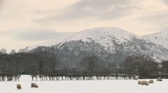 Snow covered English countryside Stock Footage