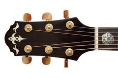acoustic guitar head - stock photo