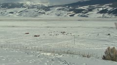 P02472 Jackson Hole Wyoming National Elk Refuge in Winter Stock Footage