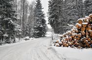 Timber stack at road Stock Photos