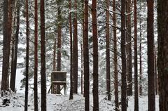 Hunting tower in winter woods Stock Photos