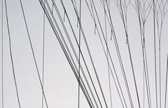 Ropes of hot-air balloon, straight line Stock Photos