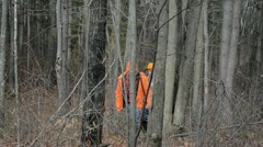 Hunters walk through woods - stock footage