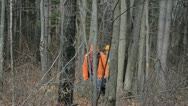 Hunters walk through woods Stock Footage
