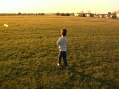 Toddler walking in park Stock Footage