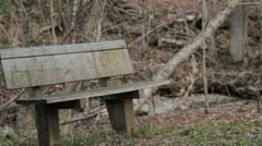Bench In Spring Woods Stock Footage